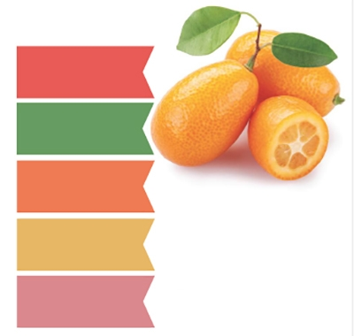 Temper a citrus-hued color palette with a few subtle tones, like dusky pink, verdant green, and blue-gray.    <i>Photography Alex Thorton</i>